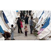 Беженство фото