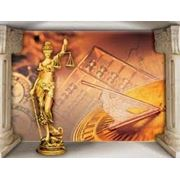 Услуги обеспечения юридической информацией фото