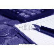 Организация бухгалтерского учета в компании