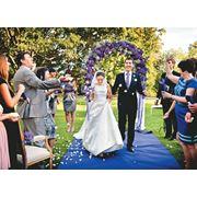 Организация свадеб. Выездная регистрация брака. фото