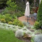 Ландшафтное проектирование и озеленение фото