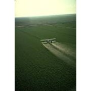 Химобработка полей фото