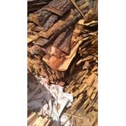 Продам дрова с пилорамы Чернигов фото