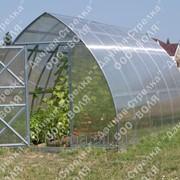 Теплица Дачная-Стрелка, длина 4000 мм, поликарбонат 4 мм, 10 лет заводской гарантии фото