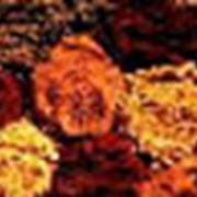 Пигменты железоокисные фото