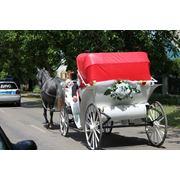 Прокат фаэтон карета. Услуги на свадьбу или другое торжество - фаэтон фото