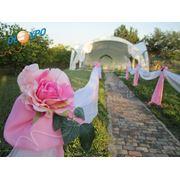 """Организация свадеб в """"Valea Nuntilor"""" фото"""