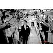 Организация проведения свадеб в Кишиневе. фото