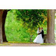 Оригинальные свадьбы в Молдове свадьбы на природе фото