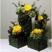 Стабилизированные цветы фото
