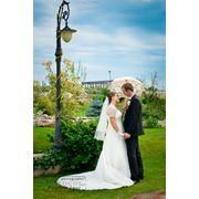 Профессиональный фотограф на свадьбу Игорь Погоний фото