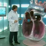 Ранняя диагностика ишемической болезни сердца фото