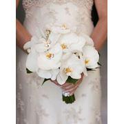 Белые букеты для невесты фото