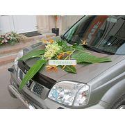 Композиция для капота из стрелиций и орхидей фото