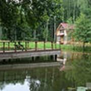 Экскурсия Брест-Беловежская Пуща (резиденция Деда Мороза) фото