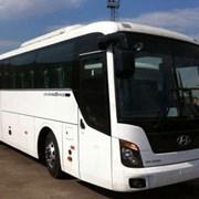 Аренда автобуса Hyundai Universe (Хендай Юниверс) фото