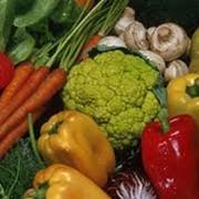 Продукты сельскохозяйственные фото