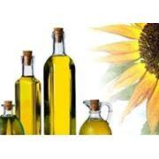 Подсолнечное масло — жирное растительное масло получаемое из семян подсолнечника. фото