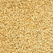Ковролин Зартекс Фортуна 008 Золотистый 3 м нарезка фото