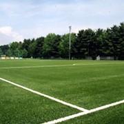 Строительство футбольных полей, Киев, Украина фото