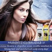 """Шампунь """"ВИАНТИК АКТИВ"""" для жирных волос, для сухих волос и против перхоти [250мл] фото"""