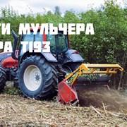 Услуги/Аренда Мульчера. Комплексная расчистка с/х  фото