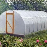 Садовые теплицы - Томато фото