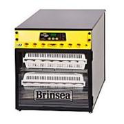 Инкубатор Ova-Easy Advance EX Hatcher ser II выводной фото