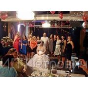 Тамада на свадьбу в Гатчине фото