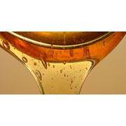 Мёд пчелиный фото