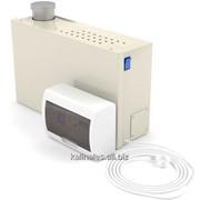 Парогенератор ПГП-2кВт проточный для кедровой фитобочки, бани и сауны фото