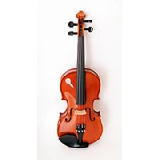 175w-4/4 Скрипка концертная 4/4 Strunal, Чехия фото