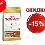 Сухой корм для собак Royal Canin Labrador Retriever 30 Adult 12 кг фото