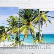 Модульна картина на полотні Пальми на пляжі код КМ100160-025 фото