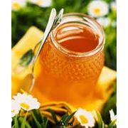 Шалфейный мед фото