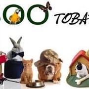 Зоомагазины, товары для животных фото