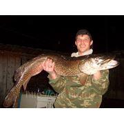 Рыбалка на щуку фото