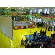 Организация и режиссура спортивных событий фото