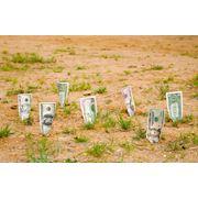 Кредиты на покупку земли фото