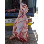 Мясо говяжье полутуши глубокой заморозки 1 категории в полутушах промзабой фото