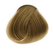 Concept, Краска для волос, 7.31 фото