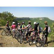 Организация велотуров фото