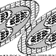 Кабель многожильный медный в силиконовой изоляции экранированый КММСЭ-4 фото