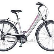 Велосипед Dynasty 2015 фото