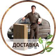 Доставка товаров на дом по Кишиневу фото