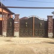 Ворота Иранские А00906 фото