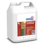 Продукт для очистки террас, каменных полов и стен Grünbelag-Entferner, Химия специализированная фото