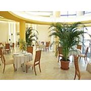 Ресторан в Niagara Fintess Club фото