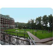 Благоустройство и озеленение территории в Молдове фото