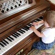 Музыкальное образование фото